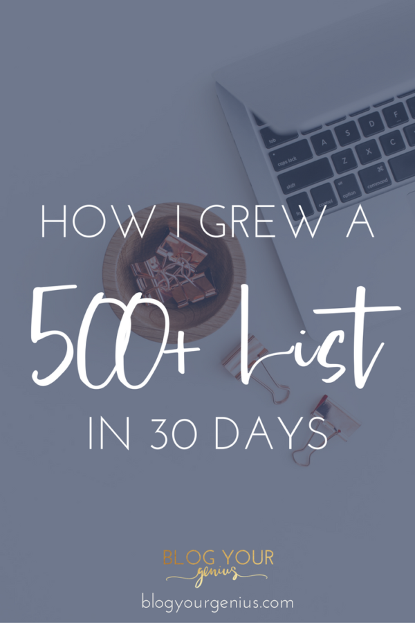 How I built a 500+ Email list in 30 days